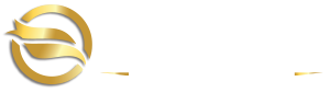 Falcon Properties Hull